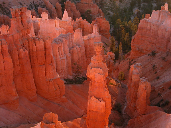 Thor's Hammer - Bryce Canyon National Park
