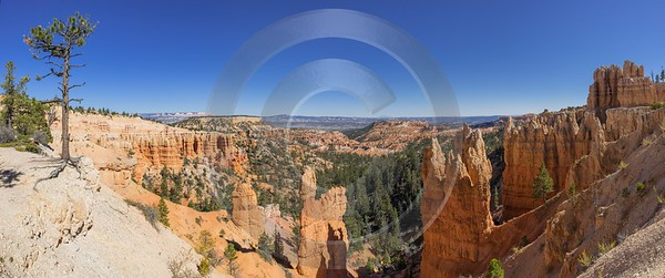 Bryce Canyon Rim Trail Overlook Utah Autumn Images Park Fine Art Giclee Printing Summer - 014972 - 02-10-2014 - 17117x7155 Pixel