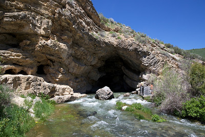 Rick Spring, Logan Canyon, Utah