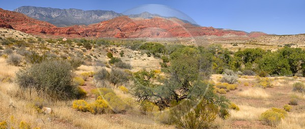 Pine Valley Mountains Silver Reef Utah Red Rock Shore Autumn Leave Image Stock Photography Park - 009509 - 13-10-2011 - 11062x4684 Pixel