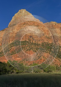 Zion National Park Watchman Trail Utah Autumn Red Art Printing Barn Forest Fine Arts Image Stock - 015097 - 30-09-2014 - 6989x9860 Pixel