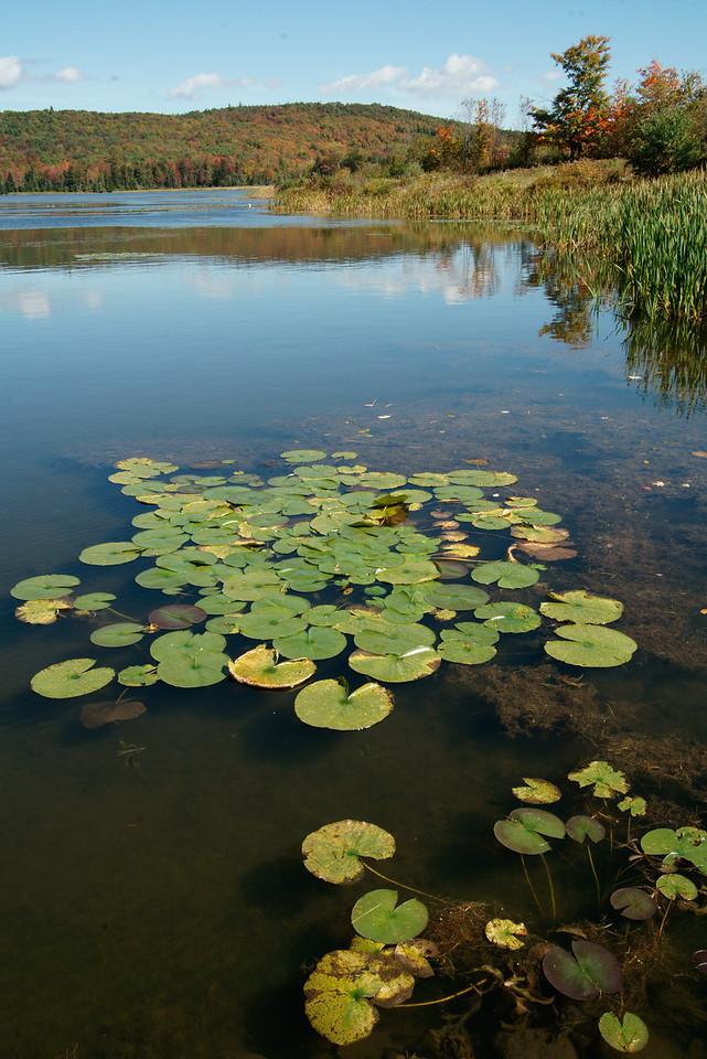 Star Lake