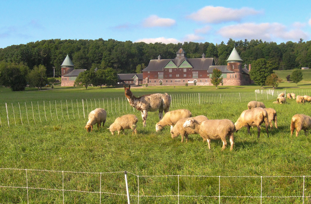 Standing Guard at Shelburne Farms