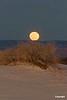 Moonrise_D306484