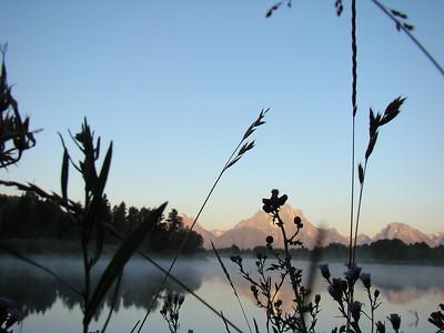 """Ce matin, lever 5H, bon rythme...si on pouvait mieux dormir! Seance photo à Oxbow bend, pour """"travailler"""" les reflets su l'eau des montagnes..."""