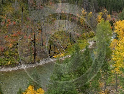 Alpine Wyoming River Tree Autumn Color Colorful Fall Sale Fine Art Nature Photography - 015558 - 21-09-2014 - 13400x10159 Pixel