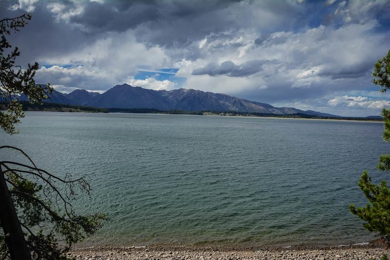 jenny lake the grand tetons