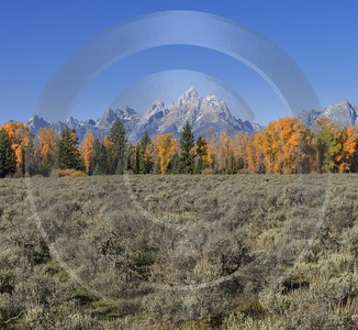 Moose Head Ranch Grand Teton National Park Wyoming Mountain What Is Fine Art Photography Sale - 015392 - 25-09-2014 - 7119x6548 Pixel