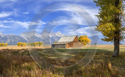 Mormon Row View Grand Teton Wyoming Tree Barn Prints For Sale Island Lake Creek Fine Art River - 015477 - 24-09-2014 - 11234x6918 Pixel