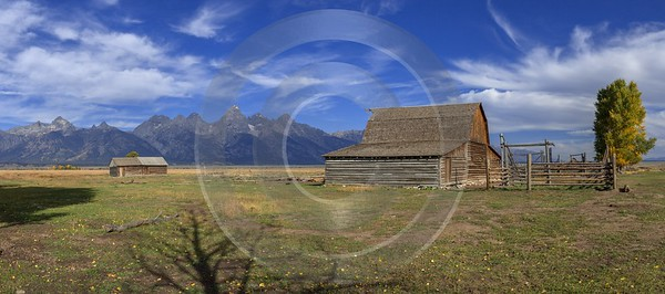 Mormon Row View Grand Teton Wyoming Tree Barn Fine Arts Sunshine Town Fine Art Photography Prints - 015471 - 24-09-2014 - 13831x6125 Pixel