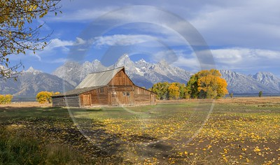Mormon Row View Grand Teton Wyoming Tree Barn Fine Arts Photography Fog - 015482 - 24-09-2014 - 11710x6907 Pixel