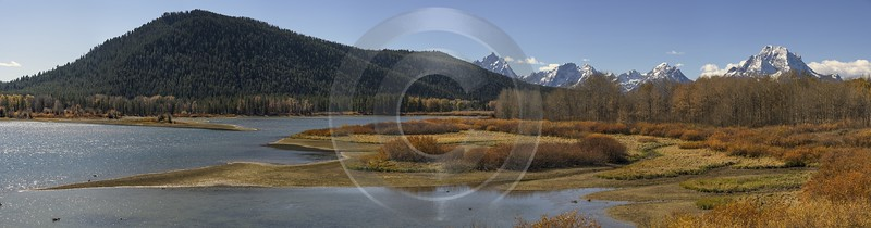 Grand Teton National Park Oxbow Bend Snake River Nature Mountain Leave Art Photography For Sale - 022062 - 12-10-2017 - 29468x7744 Pixel