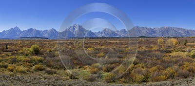 Willow Flats Mount Moran Grand Teton National Park Fine Art Posters Royalty Free Stock Images - 015342 - 25-09-2014 - 15765x6998 Pixel