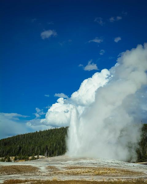 best geyser in yellowstone