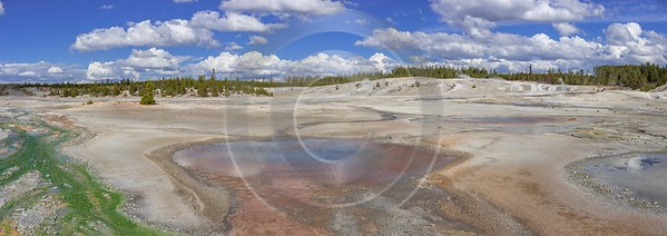 Norris Geyser Basin Trail Yellowstone National Park Wyoming Art Photography Gallery - 015278 - 26-09-2014 - 19717x6973 Pixel