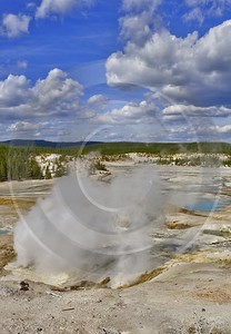 Yellowstone National Park Wyoming Norris Geyser Basin Hot Fine Art Prints For Sale Prints For Sale - 011824 - 30-09-2012 - 7210x10415 Pixel