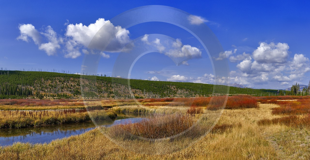 Yellowstone National Park Wyoming Grand Loop Road Willow Autumn Fine Art Landscape - 011712 - 28-09-2012 - 10199x5271 Pixel