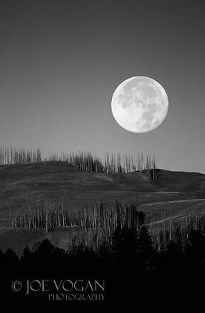 Full Moonrise, Madison, Yellowstone National Park, Wyoming