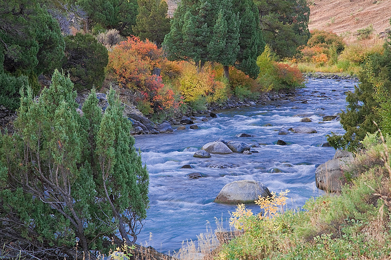 Yellowstone River at North Entrance during autumn, Yellowstone National Park, Wyoming, USA