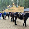 Our launching pad: Yosemite Stables
