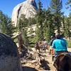 Half Dome or bust!