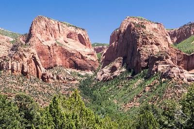 Zion NP: Kolob Canyons.