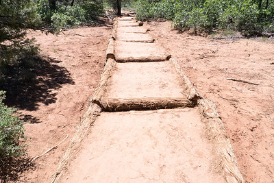 Zion NP: Kolob Canyons: Walkway on a trail built to reduce erosion in heavy rains.