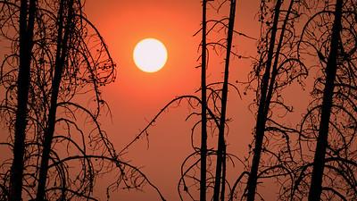 Afternoon Sun seen through Smoke, Idaho