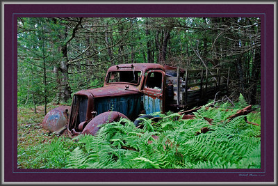 "Lycoming County, Pennsylvania--""Old Truck"" We found this old fellow in the forest."