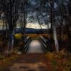 The Magical Bridge