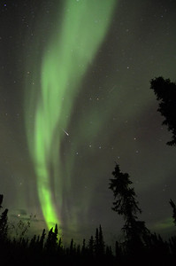 Northern Lights (aurora borealis) with a shooting star.  Outside Fairbanks, Alaska.