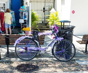 Tarpon Springs Bicycle
