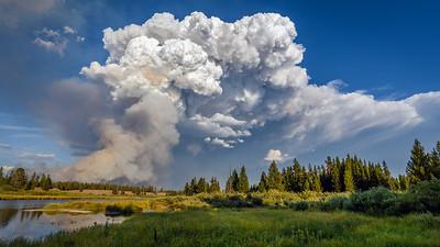 Wildfire, Yellowstone National Park, Wyoming