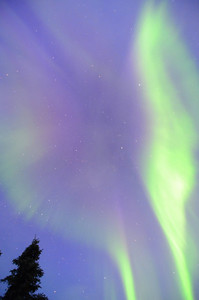 Northern Lights (aurora borealis) outside Fairbanks, Alaska