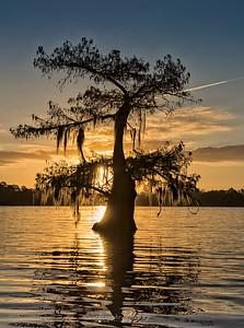 Sunset on Lake Martin