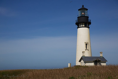 Yaquina Head Lighthouse, near Newport OR