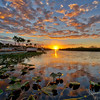 Sunset in the Everglades