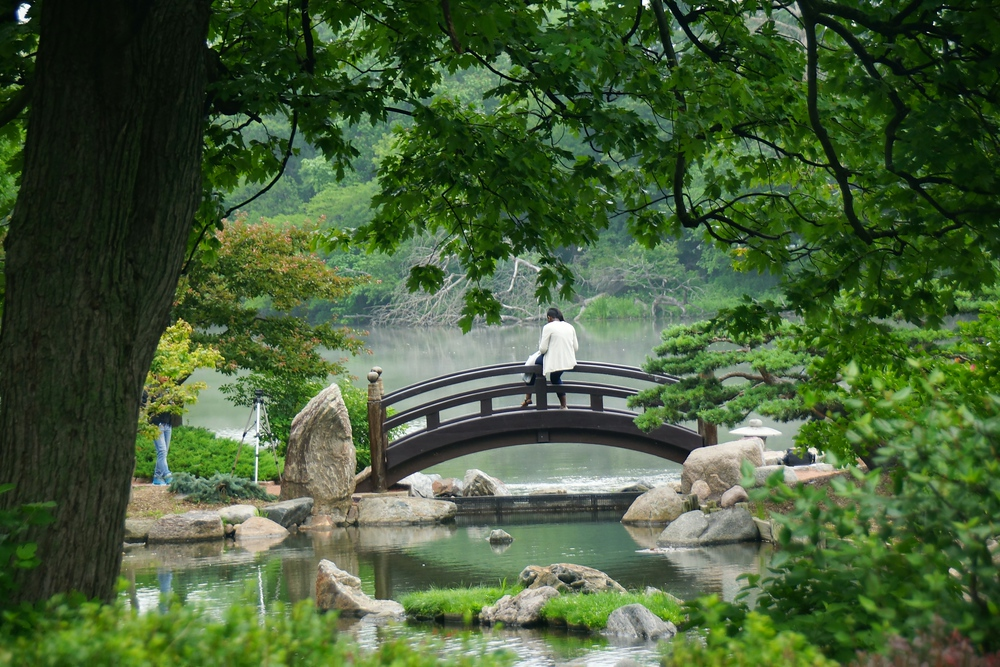 Scenic views from the Osaka Garden located on Chicago's South Side of the city