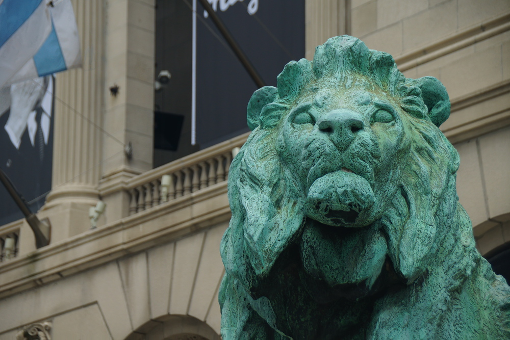 Lion statue just outside of the Art Institute of Chicago