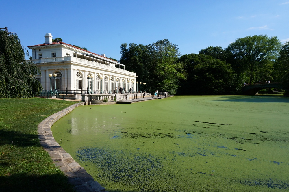 A travel photo from Prospect Park in New York City