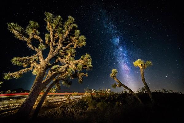 Galaxy in Joshua Tree National Park, CA