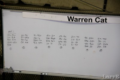 Tuesdays 8 heat races, with 9 or 8 drivers (1/4 of the drivers that are here)