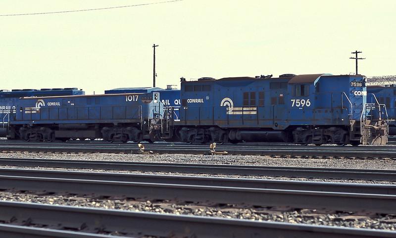 Conrail Geep 7596 and Slug 1017 work the yard at Elkhart on 15 October 1994