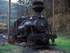 Cass Scenic Railroad 'Heisler' 6 Cass, 9 October 1994
