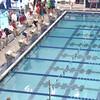 E17 Swim off