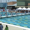 Women's 50 Freestyle Heat 3 - Arena Grand Prix -  Mesa, Arizona