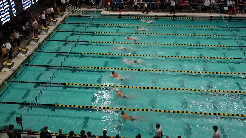 M 100 BR H19