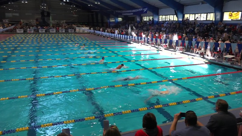 M 100 Br H06