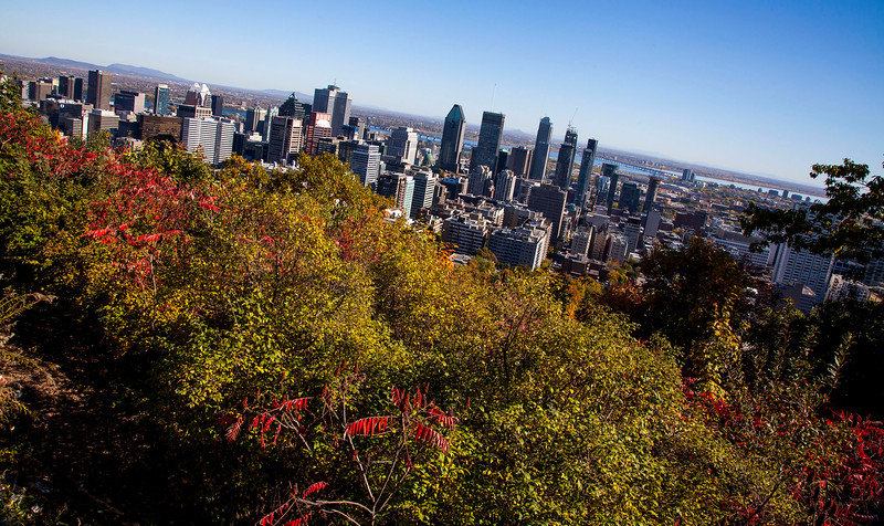 Montreal-9015z