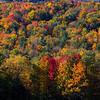 Vermont-9123z